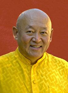 His Holiness Drikung Kyabgon Chetsang, Lineage Leader