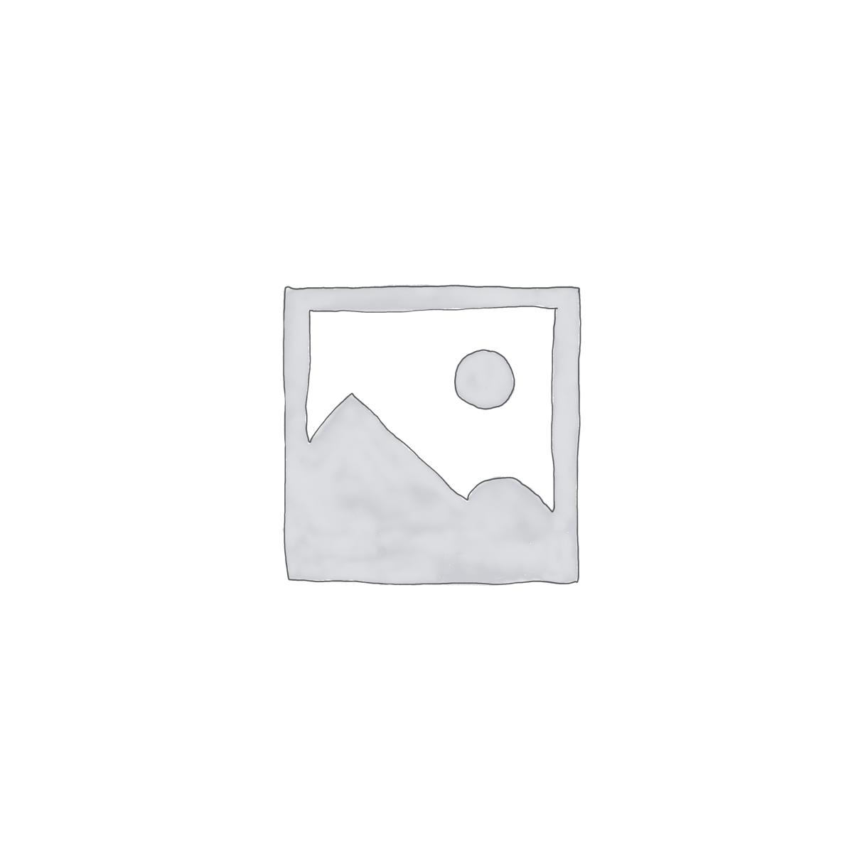 Audio File Downloads